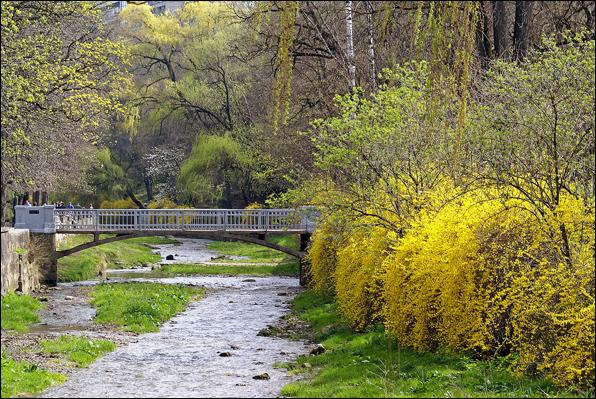 Речка Ольховка